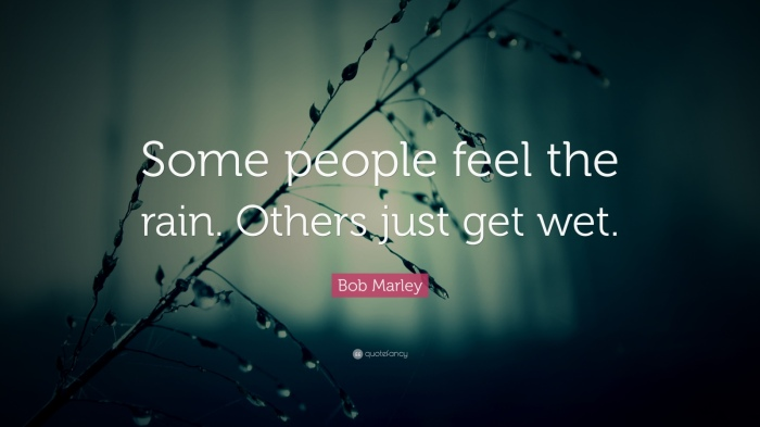 23448-bob-marley-quote-some-people-feel-the-rain-others-just-get-wet